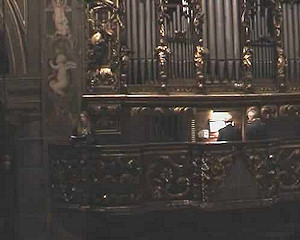 Echi d'organo 2009 - Concerto del 14 Novembre